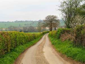 Beesonend Lane towards the Ver