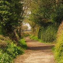 Spring lanes, Great Missenden