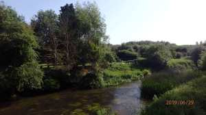 The River Thame at Stadhampton