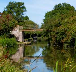 The Grand Union Canal, early autumn