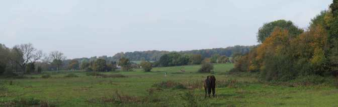 Sarratt Bottom Panorama