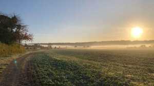 Autumn mist at Aldbury