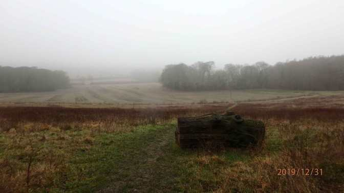 Warren Wood towards Hampden Bottom through the mist